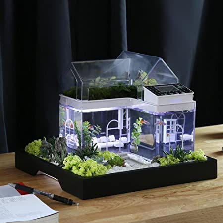 office desk fish tank. acrylic mini micro landscape aquarium office desk small personal ecology multifunctional living room creative usb fish tank