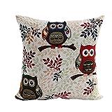 Mypillow Best Deals - Lino y Algodón Square Throw decorativos funda de almohada Funda para cojín (45,7x 45,7cm,  jsf117-2-Multicolor
