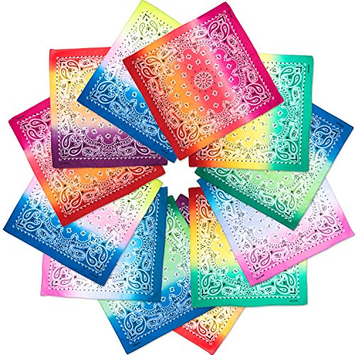 Boao 12 Pieces Novelty Gradient Bandana Classic Paisley Cotton Handkerchief (Color A)
