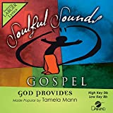 God Provides [Accompaniment/Performance Track]