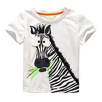 Amlaiworld Vêtements de Bébé Garçon Enfants garçons T-shirt d'impression de Caractère Tops Zèbre Blouse Tenues vêtements Pour Garçon 2-7 Ans