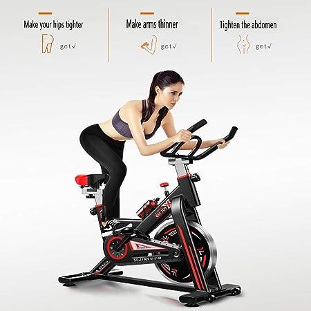Bicicleta Estática Profesional para Interiores Ejercicios para Perder Peso Esenciales, Reposabrazos del Asiento Movimiento Silencioso Ajustable, Volante Suave De 11 Kg para Enviar Hervidor De Agua: Amazon.es: Hogar