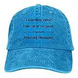 XZFQW I Solemnly Swear Trend Printing Cowboy Hat Fashion Baseball Cap for Men and Women RoyalBlue