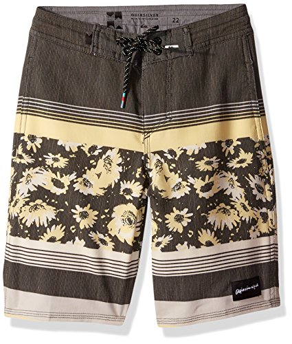 Quiksilver Big Boys' Swell Vision Beachshort Youth Boardshort, Quiet Shade, - Shades 2016 Fly