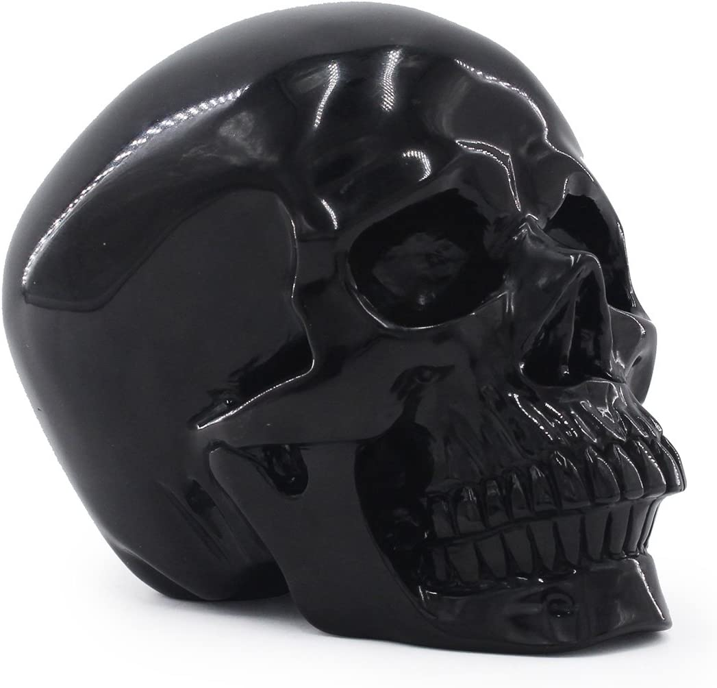Tianmai 2.68 lb Natural Obsidian Carved Realistic Crystal Skull Sculpture, Healing Energy Reiki Gemstone Collectible Figurine