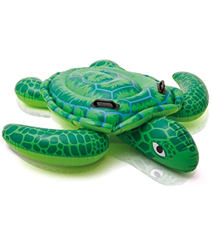 Amazon.com: Piscina con techo de tortuga para bebés ...