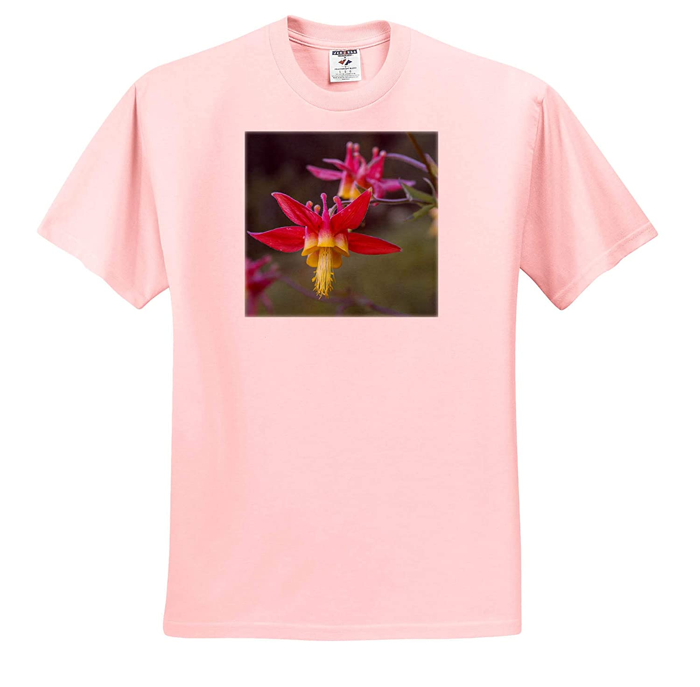 Flowers Rainier National Park - Adult T-Shirt XL Crimson Columbine Blooming in Mt ts/_315141 3dRose Danita Delimont