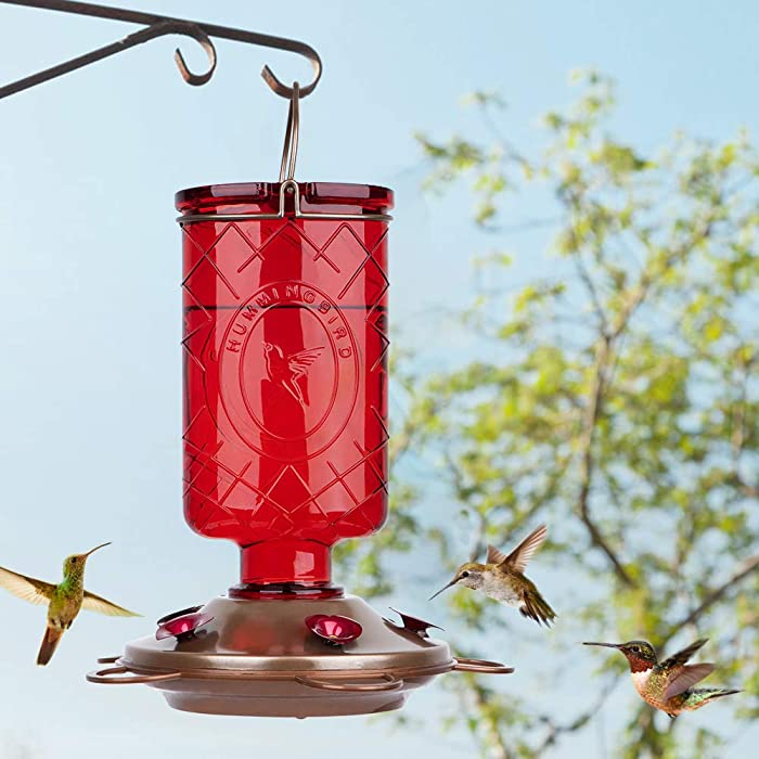 BOLITE-18005-Hummingbird-Feeder