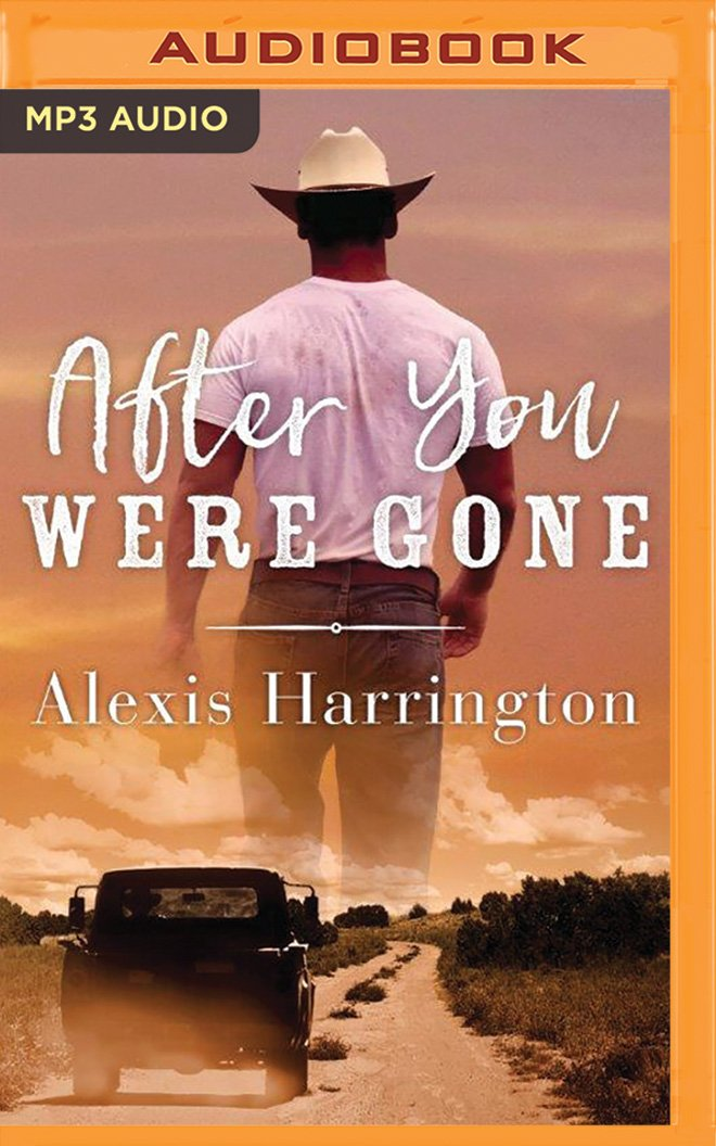 After You Were Gone ebook