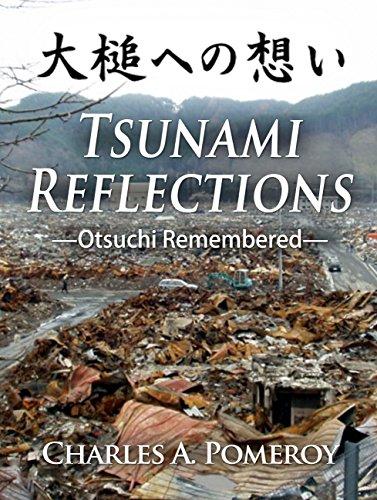 Tsunami Reflections - Otsuchi Remembered