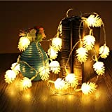 ElementDigital Battery Pinecone String Lights Christmas Party LED Light String Pine Nuts Decoration Fairy Lights for Birthday Parties Thanksgiving Decorative Christmas Tree Lights (20 LEDs 16ft)
