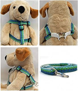 """product image for Diva-Dog 'South Beach' Custom 5/8"""" Wide Dog Step-in Harness with Plain or Engraved Buckle, Matching Leash Available - Teacup, XS/S"""