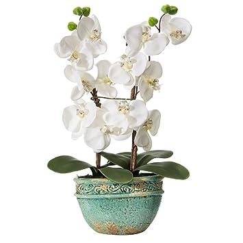 orchidee blanche en tissus