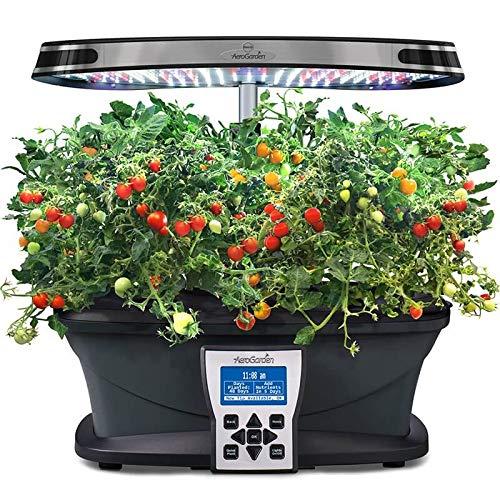 Mighty Mini Tomato Seed Pod Kit for Aerogarden (7-pod)