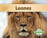 Leones (Grandes Felinos / Big Cats) (Spanish Edition)