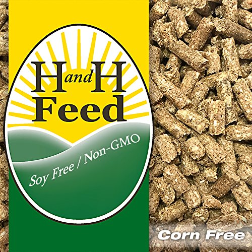 organic goat feed - 1