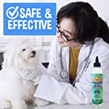 New All Natural Pet Ear Cleaner for Dogs and Cats | Eucalyptus & Aloe Vera Cleaning Treatment for Ear Mites Yeast Infection Fungus & Odor | Gentle Solution Cleanser for Ears - 1 Bottle 8oz