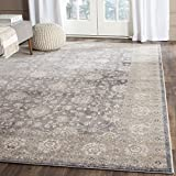 Safavieh Sofia Collection SOF330B Vintage Light Grey and Beige Distressed Area Rug (3′ x 5′) For Sale