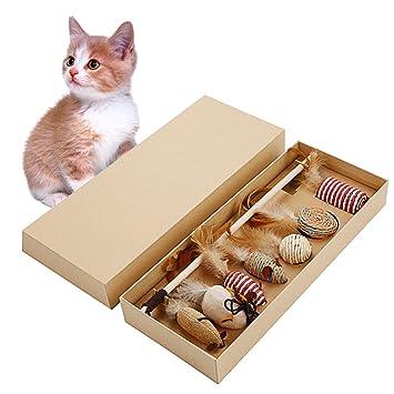 Jannyshop - Caja de regalo interactiva para gatos y gatos, para gatos: Amazon.es: Productos para mascotas