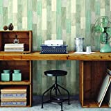 "RoomMates RMK10840WP Peel and Stick Wallpaper, 20.5"" x 16.5 Feet, Blue/Tan"