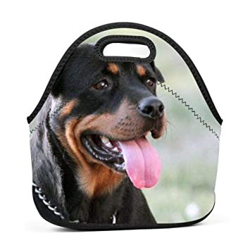 9ddca875f5a9 Amazon.com: SLBDBDMH Lunchbox Lunch Bag Rottweiler Handbag ...