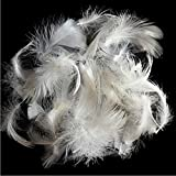 900 goose down fill - Bulk 2-4cm white goose feathers for mattress, sofa and more(3 lbs)