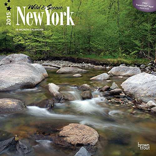 2015 calendar wall new york - 4