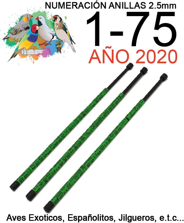 nestQ 75 Anillas Canarios Españolitos Jilgueros Exotiocs 2020 Color Verde Federativo Policromo Grabado Laser Cerradas 2.5 mm Numeradas con Año Marcado 3 Tiras con Numeración de 1-75