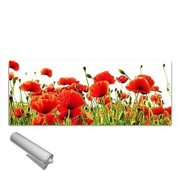 125x50 cm Spritzschutz Fliesenspiegel DekoGlas Küchenrückwand Glas Mohnblumen Herdblende aus Sicherheitsglas ESG