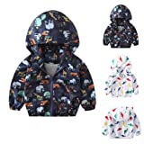 kaiCran Kids Baby Boys Girls Dinosaur Autumn