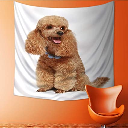 Amazoncom Magical Landscape Tapestry Apricot Poodle Puppy Isolated