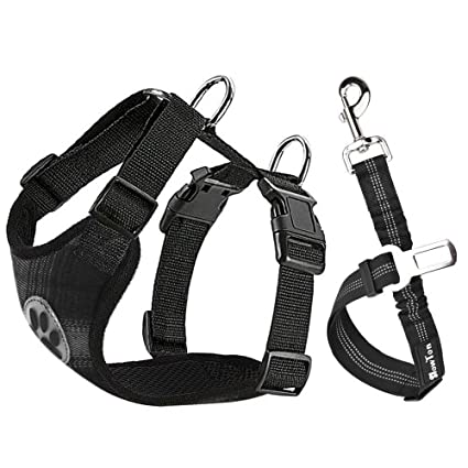 Amazon Com Slowton Dog Car Harness Plus Connector Strap