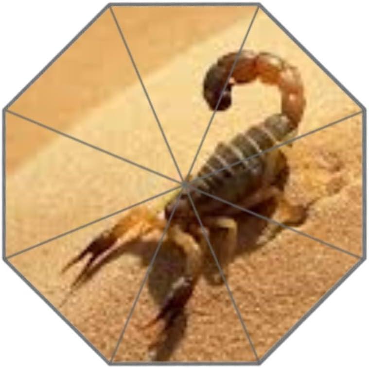 Coolstuffs Scorpion in Sand Foldable Umbrella Travel Umbrellas for Women