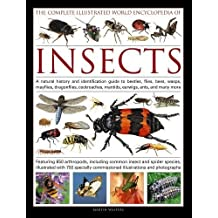 The Complete Illustrated World Encyclopedia of Insects: A Natural History And Identification Guide To Beetles, Flies, Bees, Wasps, Mayflies, Dragonflies, Cockroaches, Mantids, Earwigs, Ants, And Many More