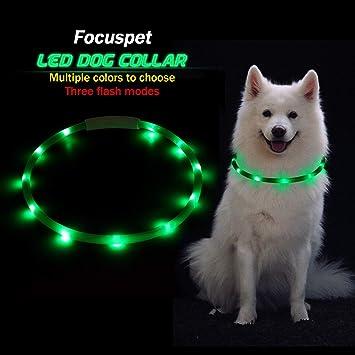 Focuspet Leuchthalsband Hund Led Halsband Hundehalsband Leuchtend Usb Wiederaufladbar Und Langenverstellbar