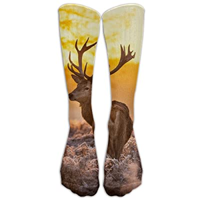 Whitetail Deer Unisex Sports Socks Tube Socks Knee High Compression Sports Athletic Socks Tube Stockings Long Socks