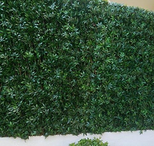 Fensterbild celosía de hojas vid en blanco verde en PVC – Dim: 1,00 m x 2 m – pegane-: Amazon.es: Hogar