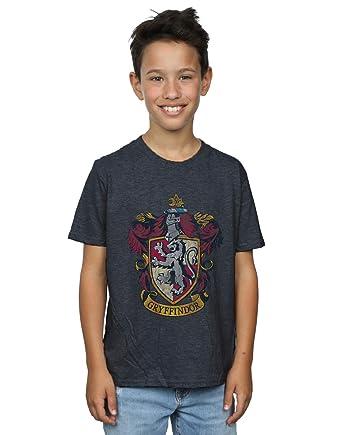 HARRY POTTER Boys Gryffindor Distressed Crest T-Shirt