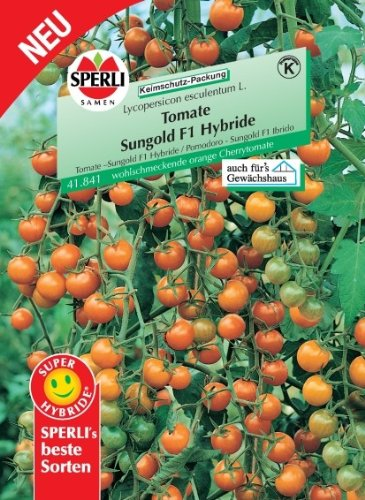 Tomate Sungold F1
