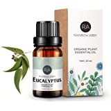 Eucalyptus Essential Oil 100% Pure Aromatherapy oil for Diffuser, Massage, Skin Care, Soaps, Candles - 10ml