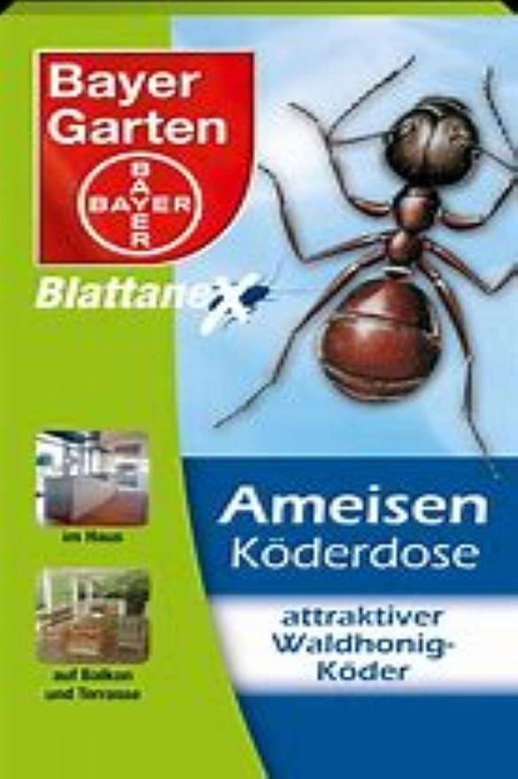 Bayer hojas ANEX hormigas enchufe de cebo, actúa hasta el nido, hormiga Medio, 2 x 2 unidades): Amazon.es: Jardín