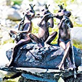 Certikin International Ltd Heissner 003287-00 40cm Spitter Frog Concert
