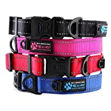 Max and Neo NEO Nylon Buckle Reflective Dog Collar - We Donate a Collar to a Dog Rescue for Every Collar Sold (MEDIUM, PINK)