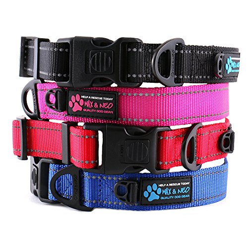 Max and Neo NEO Nylon Buckle Reflective Dog Collar - We Donate a Collar to a Dog Rescue for Every Collar Sold (MEDIUM, PINK) by Max and Neo