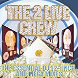 Essential Dj 12 Inch & Mega Mixes (clean)