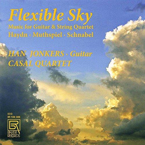 flexible-sky-music-for-guitar-string-quartet