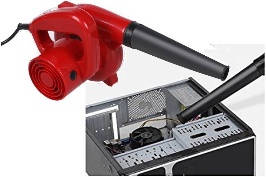 Amazon.com: rapesee soplador eléctrico de 600 W Hand Held ...