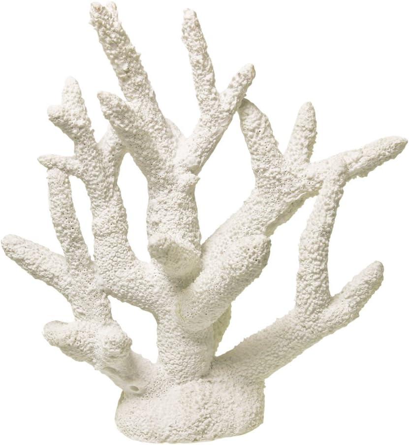 Exotic Environments Coral