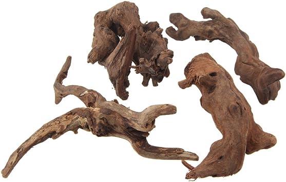 Driftwood Pieces Lot of 2 Decor Art Craft Aquarium Terrarium #308