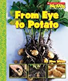 From Eye to Potato, Ellen Weiss, 0531185354
